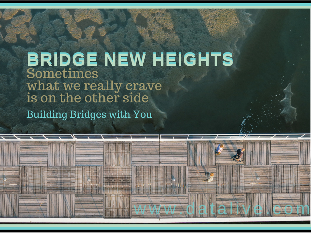 Bridge New Heights