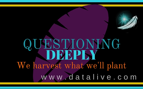 DATALIVE questioning deeply Locking it in or out