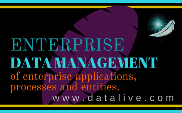 Enterprise Data Management (EDM)