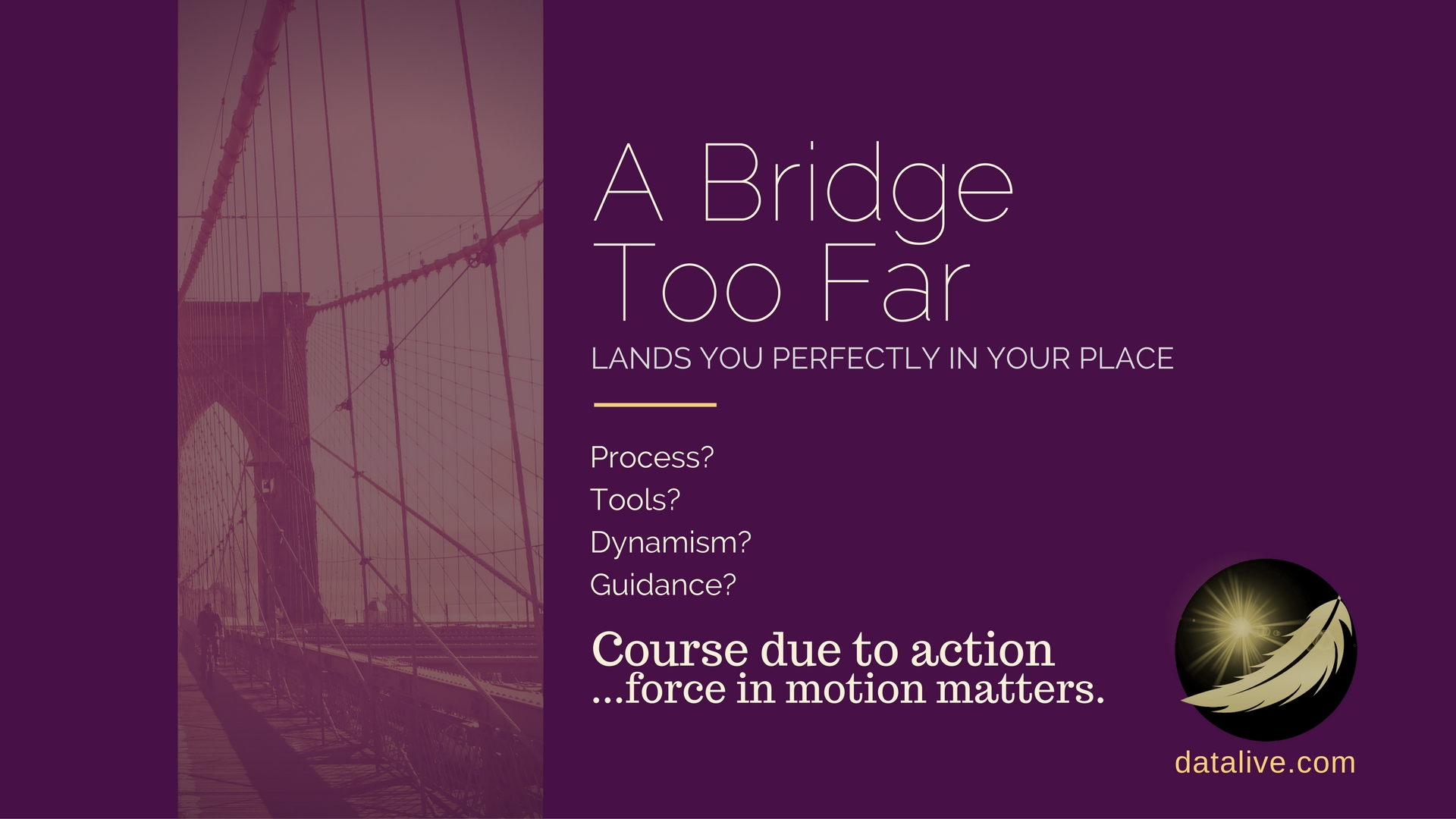 A Bridge Too Far It will be alright datalive live data enterprising solutions